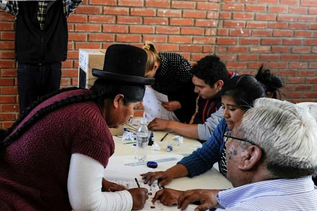 Bolivia's seven million eligible voters also cast ballots to choose members of the 166-seat congress (AFP Photo/JORGE BERNAL)
