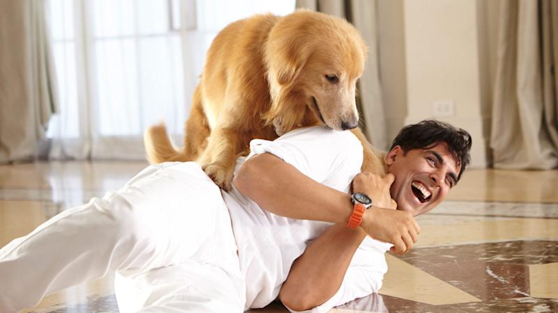 Akshay Kumar Takes Time Off 'Pad Man' to Play With These Pups