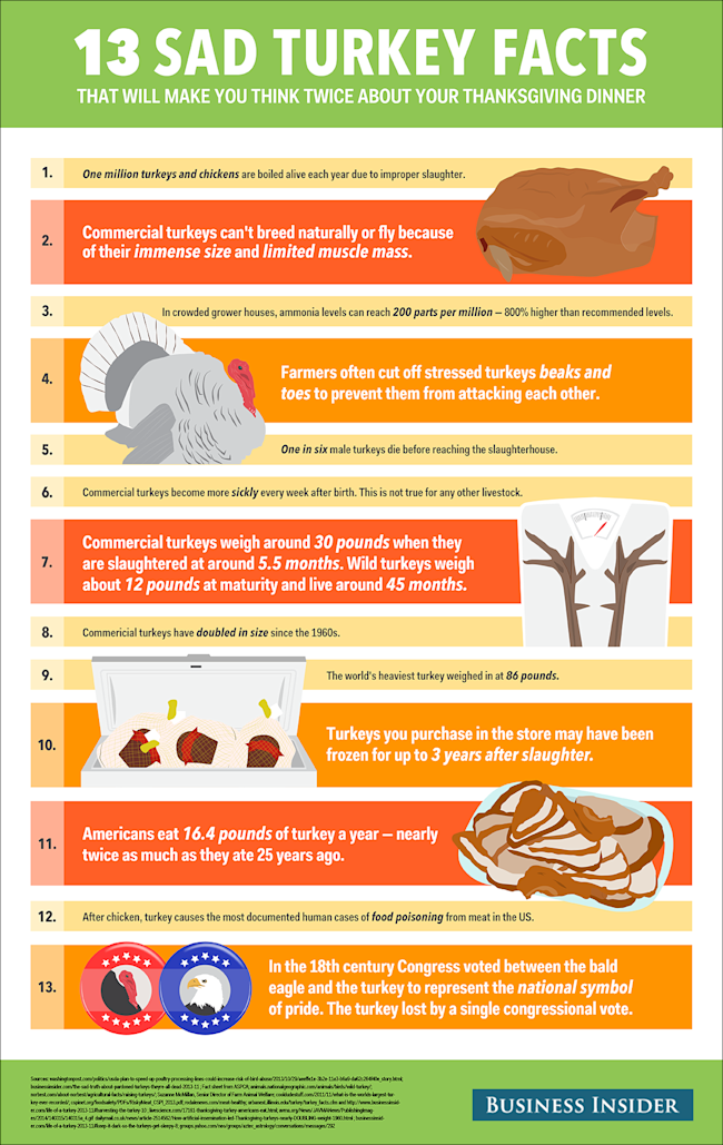 Disturbing Facts About Your Thanksgiving Turkey