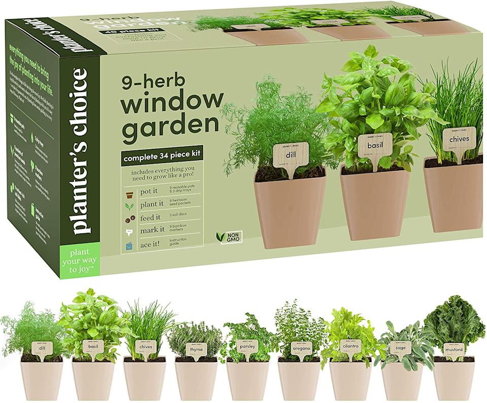 Planters' Choice 9 Herb Window Garden (Photo via Amazon)