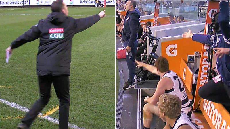 Geelong were angry over Nick Maxwell (pictured left) entering the field of play. (Image: Fox Sports)