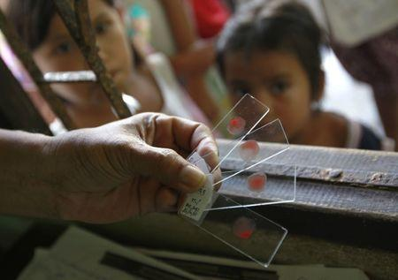 A Ministry of Public Healthofficial holds blood test slides taken from children who live in Thai-Myanmar border at a malaria clinic in the Sai Yoke district