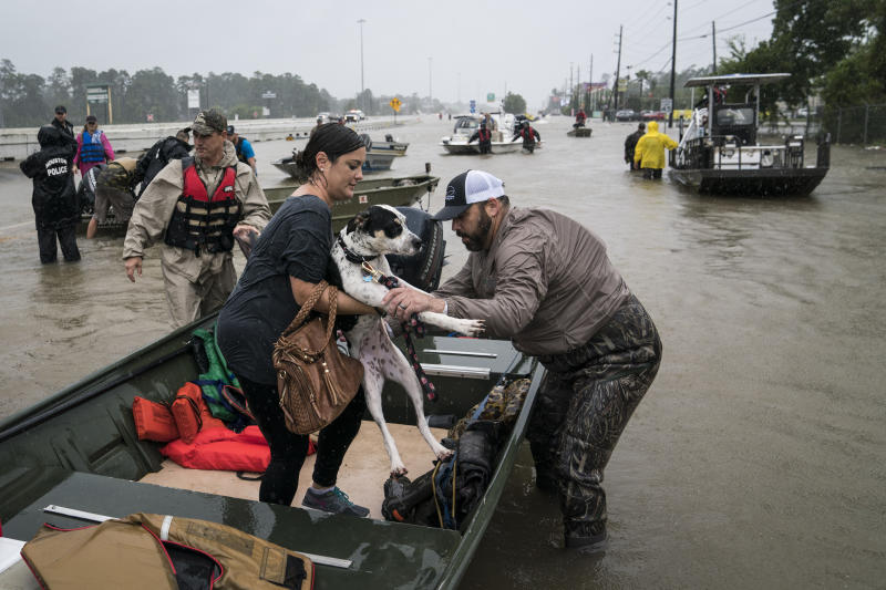 These Shelters Are Spending Thousands to Keep Animals Safe During Hurricane Florence. Here's How to Help