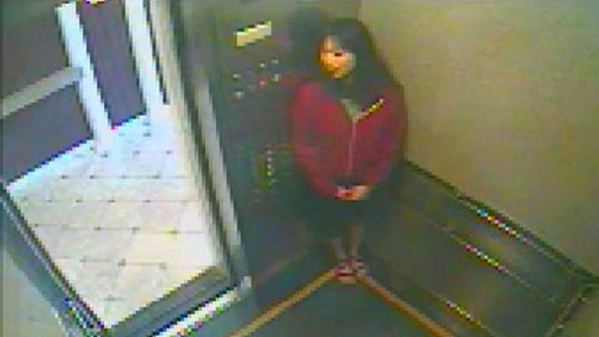A new video released by police shows Elisa Lam pressing several buttons in an elevator