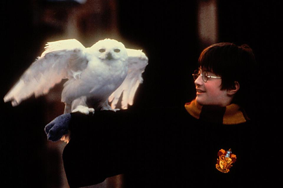 """<p>OK, so the <strong><a class=""""link rapid-noclick-resp"""" href=""""https://www.popsugar.com/Harry-Potter"""" rel=""""nofollow noopener"""" target=""""_blank"""" data-ylk=""""slk:Harry Potter"""">Harry Potter</a></strong> films aren't <a class=""""link rapid-noclick-resp"""" href=""""https://www.popsugar.com/Halloween"""" rel=""""nofollow noopener"""" target=""""_blank"""" data-ylk=""""slk:Halloween"""">Halloween</a> movies per se, but what better way to get into the mood than with witches, wizards, goblins, and magic? (Not to mention a little pumpkin juice.)</p> <p><a href=""""https://play.hbomax.com/page/urn:hbo:page:GXssCvwxYD76jiAEAAAAy:type:feature"""" class=""""link rapid-noclick-resp"""" rel=""""nofollow noopener"""" target=""""_blank"""" data-ylk=""""slk:Watch Harry Potter and the Sorcerer's Stone on HBO Max here!"""">Watch <strong>Harry Potter and the Sorcerer's Stone</strong> on HBO Max here!</a></p>"""