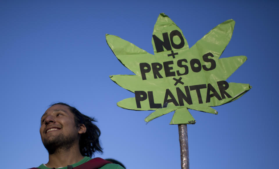 "A demonstrator holds a banner that reads in Spanish "" No Detained For Planting,""  as he takes part in a march calling to legalize the cultivation of cannabis for personal use in Buenos Aires, Argentina, Thursday, Dec. 4, 2014. Argentine law prohibits the cultivation, consumption and sale of cannabis. (AP Photo/Natacha Pisarenko)"