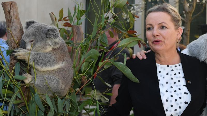 SUSSAN LEY NATIONAL THREATENED SPECIES