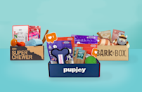 """<p>If your dog barks their head off every time the mail carrier rings the doorbell, allow us to suggest trying a little bribery in form of a dog subscription box. The best subscription boxes for dogs come to your door stocked with <a href=""""https://www.goodhousekeeping.com/life/pets/g5025/indestructible-dog-toys/"""" rel=""""nofollow noopener"""" target=""""_blank"""" data-ylk=""""slk:doggie toys"""" class=""""link rapid-noclick-resp"""">doggie toys</a>, treats and even outfits to keep Fido's stash of stuff fresh and fun every month. And because <a href=""""https://www.goodhousekeeping.com/holidays/mothers-day/g31992924/best-subscription-boxes-for-moms/"""" rel=""""nofollow noopener"""" target=""""_blank"""" data-ylk=""""slk:subscription boxes"""" class=""""link rapid-noclick-resp"""">subscription boxes</a> for pets come in just about <a href=""""https://www.goodhousekeeping.com/life/pets/g5138/best-family-dogs/"""" rel=""""nofollow noopener"""" target=""""_blank"""" data-ylk=""""slk:every shape, size and breed"""" class=""""link rapid-noclick-resp"""">every shape, size and breed</a>, there's definitely one you and your dog will love.</p><p> Whether your pup makes short work of every toy you buy (mine once disemboweled a stuffie in under three minutes) or can't get enough <a href=""""https://www.goodhousekeeping.com/life/pets/g23026561/homemade-dog-treats/"""" rel=""""nofollow noopener"""" target=""""_blank"""" data-ylk=""""slk:dog treats"""" class=""""link rapid-noclick-resp"""">dog treats</a>, there are boxes for that. Others cater to pets who have <a href=""""https://www.goodhousekeeping.com/life/pets/a19685529/best-dog-food-brands/"""" rel=""""nofollow noopener"""" target=""""_blank"""" data-ylk=""""slk:specific doggie diet concerns"""" class=""""link rapid-noclick-resp"""">specific doggie diet concerns</a> or canine fashion plates with some influencer-level #petstagram games. </p><p>Many of our favorite dog subscription also let owners customize the contents to make them perfectly tailored to your individual furry friend, so you can get the most out of every shipment. Others give you the option to tweak th"""