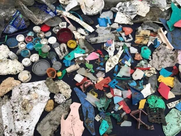 Top Environment official urges Canadians to back Ottawa's ambitious plans to tackle plastic trash
