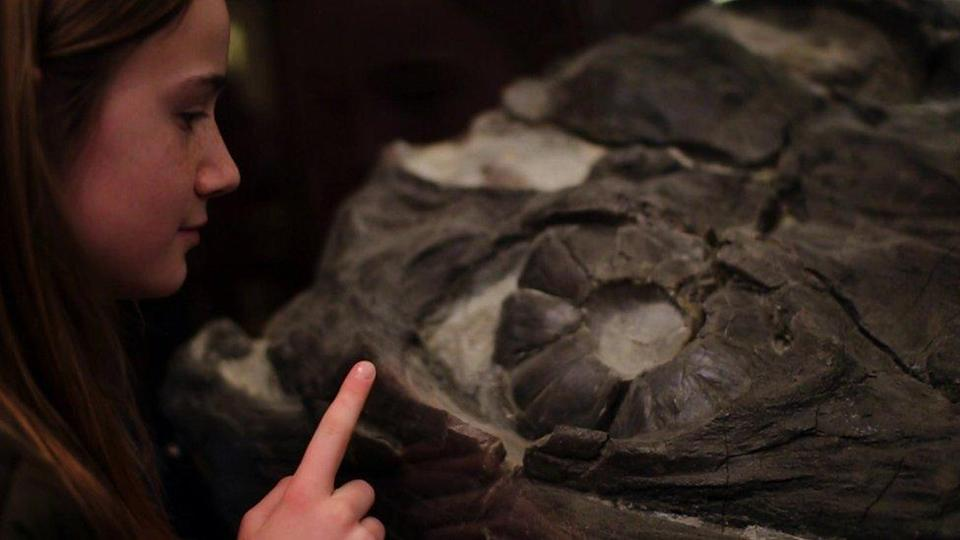 Evie staring into the eye of a marine reptile.
