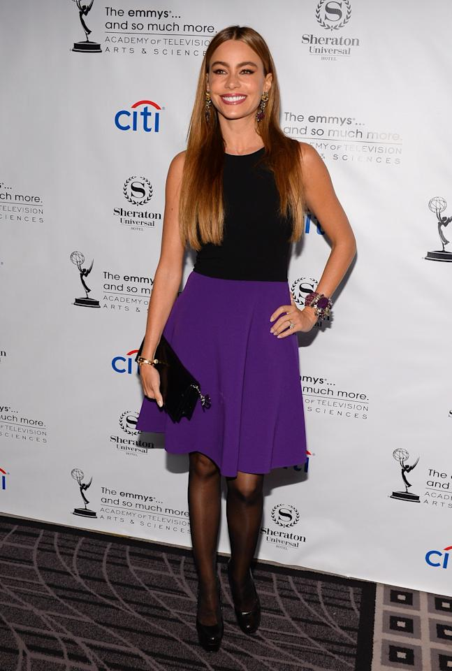 UNIVERSAL CITY, CA - AUGUST 19: Actress Sofa Vergara arrives at the Academy of Television Arts & Sciences' Performers Peer Group cocktail reception to celebrate the 65th Primetime Emmy Awards at Sheraton Universal on August 19, 2013 in Universal City, California. (Photo by Mark Davis/Getty Images)