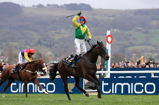 Sizing John will miss his defence of the featured Gold Cup at next week's Cheltenham Festival