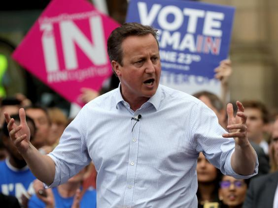 Cameron's fundamental mistake was to legitimise the Out cause by putting the option on the ballot paper (Getty)