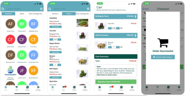 Online Grocery Delivery in the Philippines - Session Groceries
