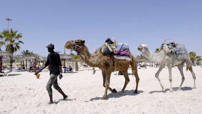 A man leading two camels along a beach in Sousse, Tunisia - Saturday 22 May 2021