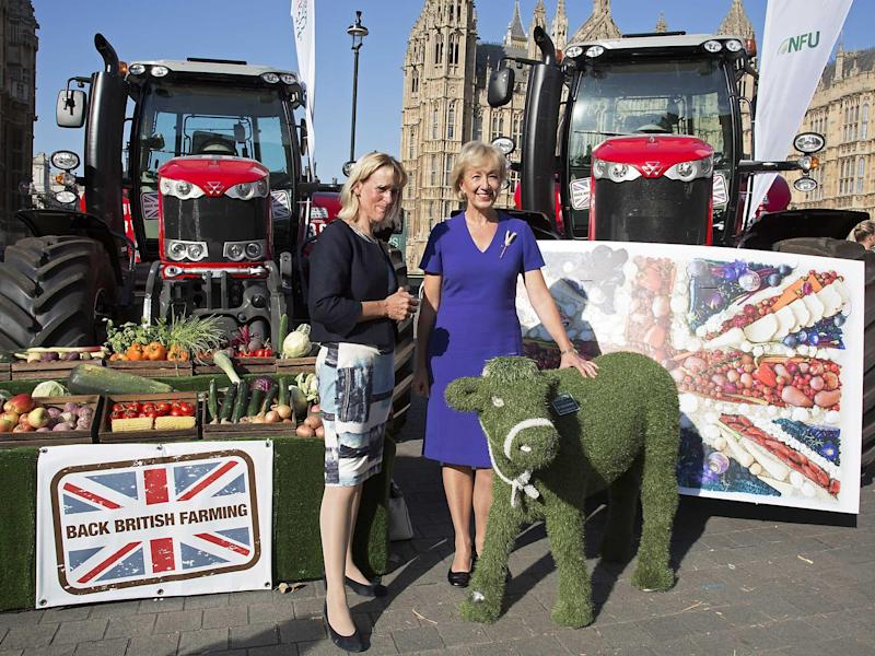 NFU Vice President Minette Batters with Secretary of State, Andrea Leadsome at the National Farmers Union (NFU) took machinery, produce, farmers and staff to Westminster to encourage Members of Parliament to back British farming, post Brexit: Getty