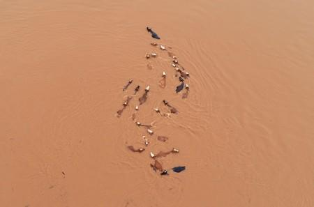 Corrected: China flood death toll hits 61, 350,000 evacuated - ministry
