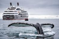 """It takes a year to plan an Antarctica trip because there are a limited number of departures during peak season, and demand is high,"" says Ashton Palmer, an expedition cruise specialist at Expedition Trips, who has been planning trips to the region for more than two decades. ""Planning your trip with at least a year ahead of time you are assured the opportunity to confirm the departure and cabin of your choice."" Choosing the right ship doesn't just mean nabbing the most luxurious amenities like top-deck heated pools and ocean-view saunas for taking in the views of penguin-topped glaciers. Travelers worried about the rough waters of the Drake Passage will also want to prioritize getting a spot on state-of-the-art ships <a href=""https://www.cntraveler.com/story/new-antarctica-cruise-ships-are-built-for-both-adventure-and-sustainability?mbid=synd_yahoo_rss"" rel=""nofollow noopener"" target=""_blank"" data-ylk=""slk:designed for smooth sailing"" class=""link rapid-noclick-resp"">designed for smooth sailing</a>. You might also want to plan your trip around an important natural event: like December 2021's total solar eclipse, <a href=""https://www.cntraveler.com/story/best-antarctica-cruises-for-catching-the-solar-eclipse?mbid=synd_yahoo_rss"" rel=""nofollow noopener"" target=""_blank"" data-ylk=""slk:only visible from Antarctica"" class=""link rapid-noclick-resp"">only visible from Antarctica</a>."