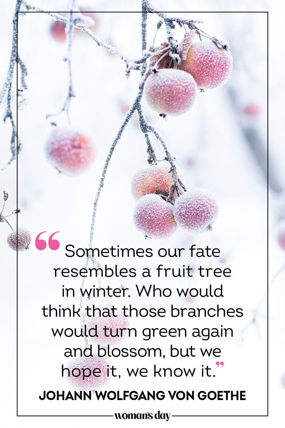 "<p>""Sometimes our fate resembles a fruit <a href=""https://quotefancy.com/quote/839496/Johann-Wolfgang-von-Goethe-Sometimes-our-fate-resembles-a-fruit-tree-in-winter-Who-would"" rel=""nofollow noopener"" target=""_blank"" data-ylk=""slk:tree in winter"" class=""link rapid-noclick-resp"">tree in winter</a>. Who would think that those branches would turn green again and blossom, but we hope it, we know it."" — Johann Wolfgang von Goethe</p>"