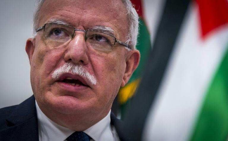 Palestinian Minister of Foreign Affairs Riyad al-Maliki speaks to the press following talks with the ICC prosecutor at the International Criminal Court in The Hague
