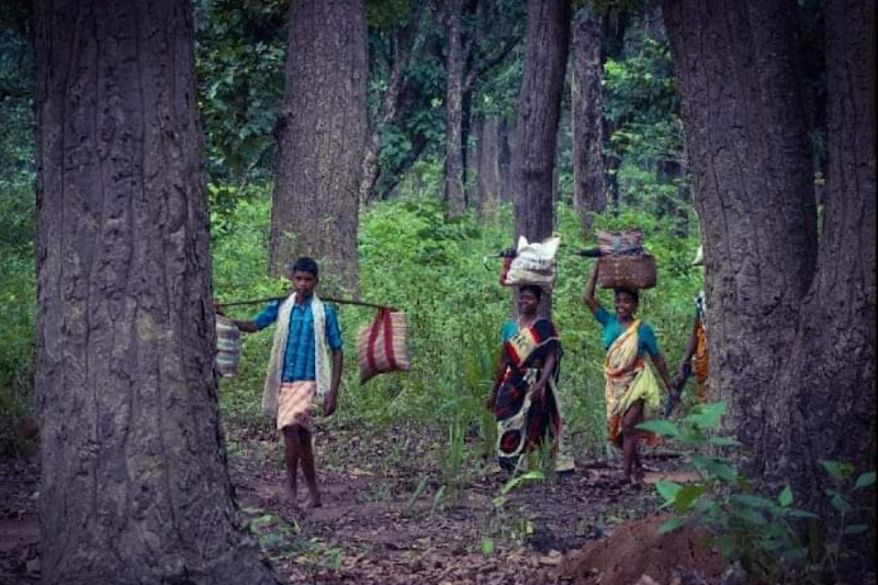 The Voice That Was Never Heard: Tribals Need Their Own Leaders to Represent Their Aspirations