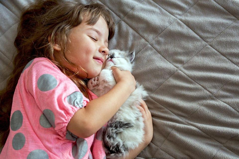 <p>A kitten AND a baby? That's just too much. It's cuteness overload!! </p>