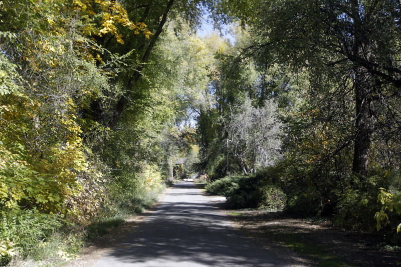 This undated photo shows the private tree-lined driveway near Walker Lane, in Holladay, Utah, where Mitt Romney said he is planning to build a home. His study features a book case that swivels open and leads into secret room, The Salt Lake Tribune reports, based on records it obtained. (AP Photo/The Salt Lake Tribune, Al Hartmann) DESERET NEWS OUT; LOCAL TV OUT; MAGS OUT