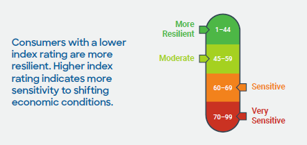 The index rates consumers' resilience on a scale from 1 to 99. Those with a rating between 1 and 44 are considered the most prepared to weather an economic shift. Photo: FICO