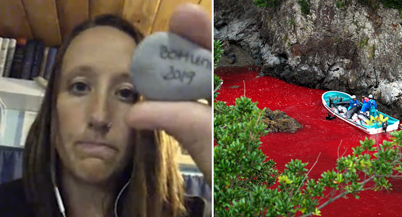 Split screen. A young woman holds a rock towards the camera during a Skype call. Water turned red from dolphin blood in the cove, Taiji.
