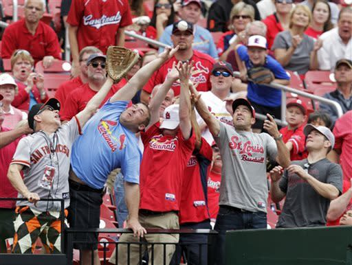 St. Louis Cardinals fans reach to catch a foul ball hit by Cardinals' Daniel Descalso in the third inning of the first baseball game of a doubleheader against the San Francisco Giants, Saturday, June 1, 2013 in St. Louis.(AP Photo/Tom Gannam)
