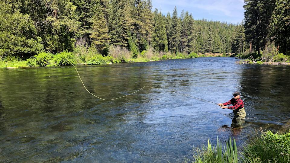 Fly fisherman casting to rising native rainbow trout on the Metolius River near Sisters Oregon.