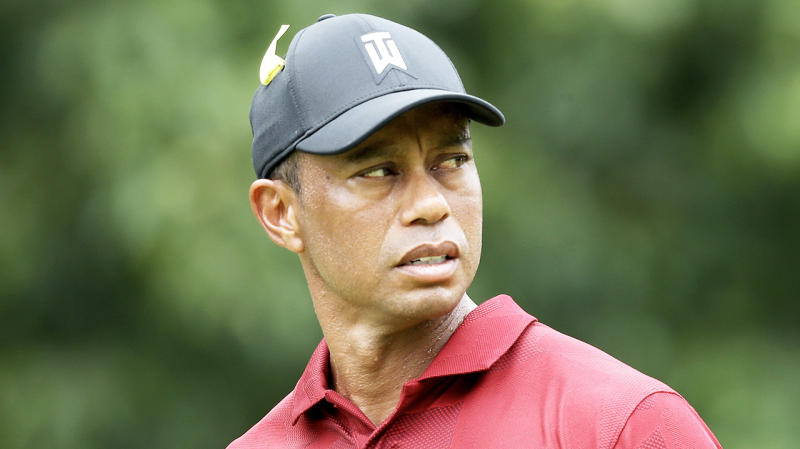 Tiger Woods (pictured) examines the next hole before his shot.