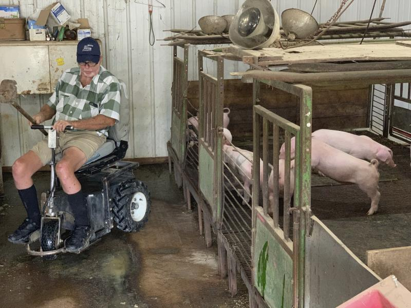 In this July 10, 2019, photo, farmer Mark Hosier, 58, rides a scooter as he checks on his pigs on his farm in Alexandria, Ind. Hosier was injured in 2006, when a 2000-pound bale of hay fell on him while he was working. Assistive technology, help from seasonal hires and family members, and a general improvement in the health of U.S. seniors in recent decades have helped farmers remain productive and stay on the job well into their 60s, 70s and beyond. (Andrew Soregel via AP)