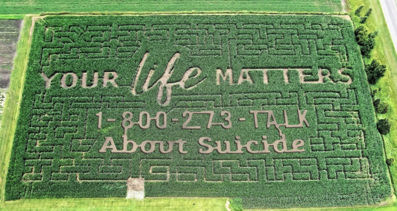 A Wisconsin family used their annual corn maze for an important message this year, drawing attention to the National Suicide Prevention Lifeline. (Photo: Facebook)