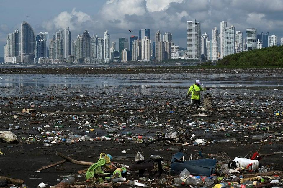 Skimming the surface: A man collects plastic waste at the beach of Costa del Este in Panama City (AFP via Getty Images)