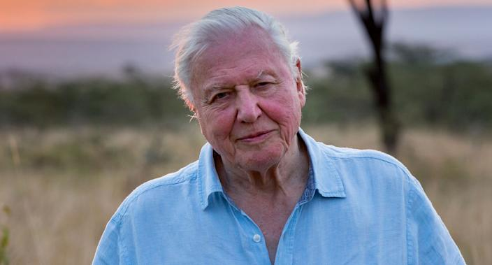 Sir David Attenborough narrates all eight episodes of Netflix's <i>Our Planet</i> which launches Friday. (Netflix)