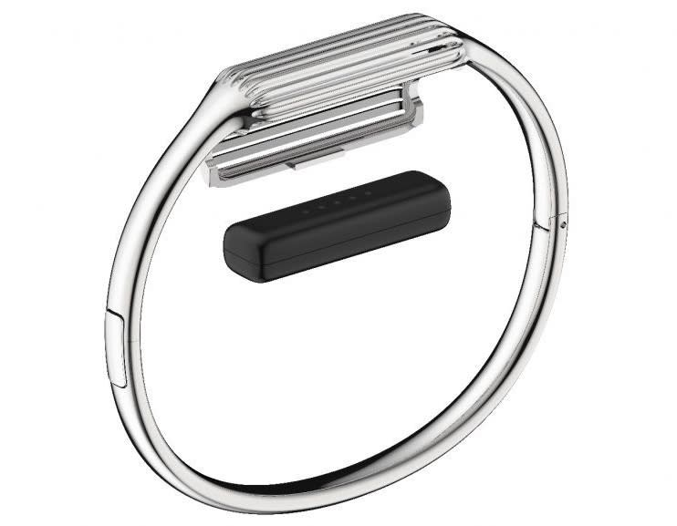Fitbit Flex 2 bangle .