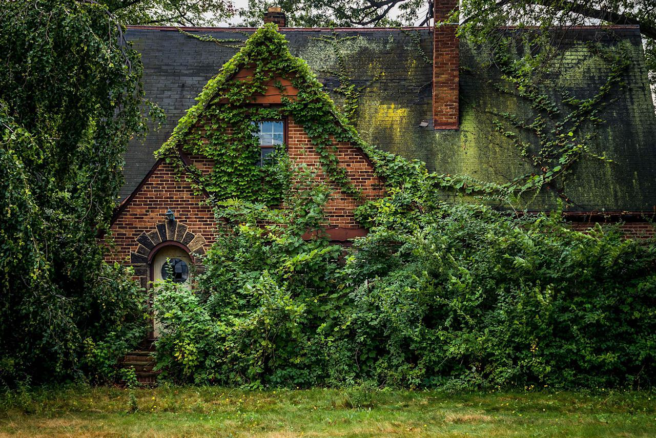 <p>Abandoned overgrown fairy house in Ohio. (Photo:Johnny Joo/Caters News) </p>