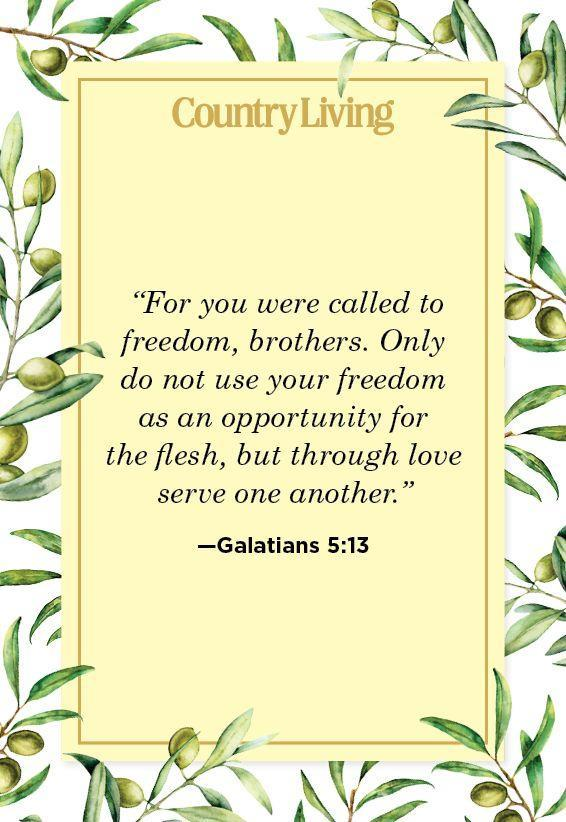 """<p>""""For you were called to freedom, brothers. Only do not use your freedom as an opportunity for the flesh, but through love serve one another.""""</p>"""