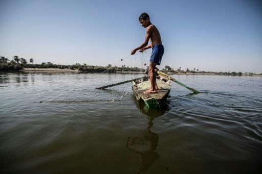 A young Egyptian fisherman pulls his net in the River Nile, south of the Egyptian capital, with Egypt suffering for years from an acute water crisis