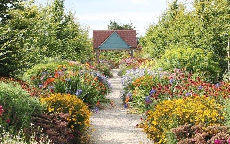 Visitors to the garden can walk among perennials, salvias, echinacea and kniphofia in expertly-planted plots - National Garden Scheme