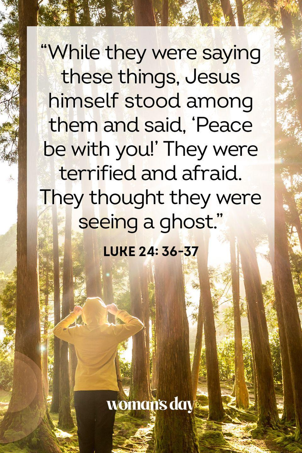 """<p>""""While they were saying these things, Jesus himself stood among them and said, 'Peace be with you!' They were terrified and afraid. They thought they were seeing a ghost."""" — Luke 24: 36-37</p><p><strong>The Good News:</strong> Living righteously, trusting in the word of God, is the surest path to a life of peace.</p>"""