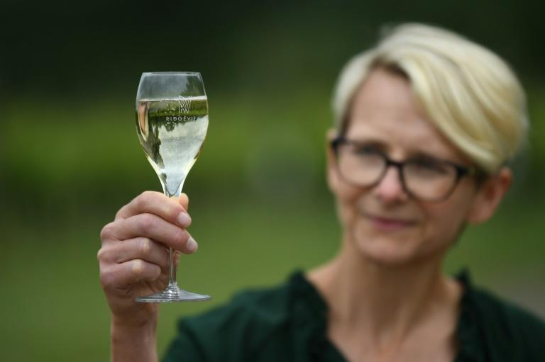 """Ridgeview winery CEO Tamara Roberts says Brexit has pushed seasonal workers to stay home """"because we haven't made it easy for them to come""""."""