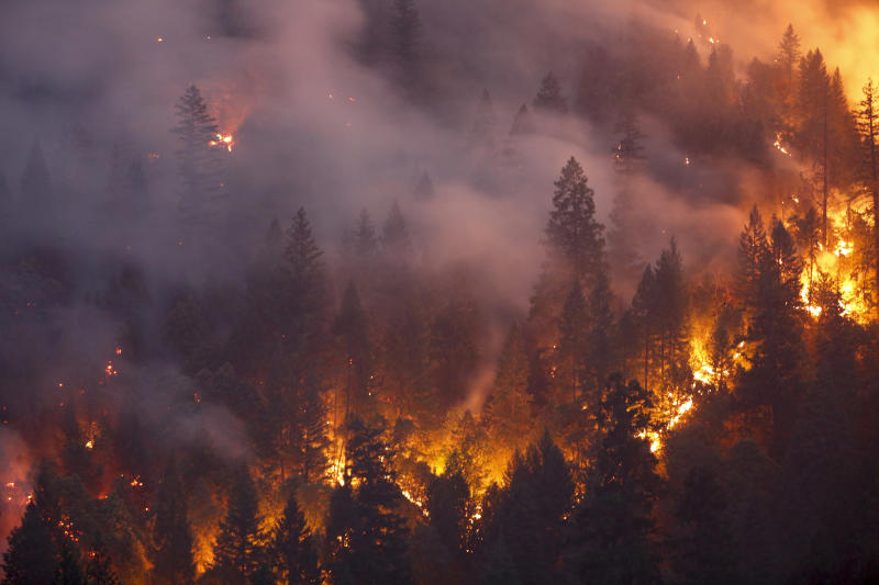 California's Wildfires Are Spreading Faster and Burning More This Year. Experts Say It 'Can Only Get Worse'