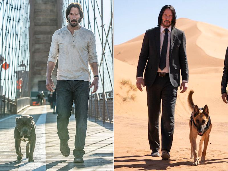 First Photos of John Wick: Chapter 3 Cause Fans to Fear the
