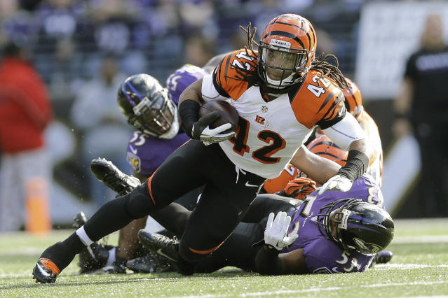 Cincinnati Bengals running back BenJarvus Green-Ellis (42)carries the ball for short yardage past Baltimore Ravens outside linebacker Terrell Suggs, left, and inside linebacker Jameel McClain, right, during the first half of an NFL football game in Baltimore, Sunday, Nov. 10, 2013. (AP Photo/Patrick Semansky)