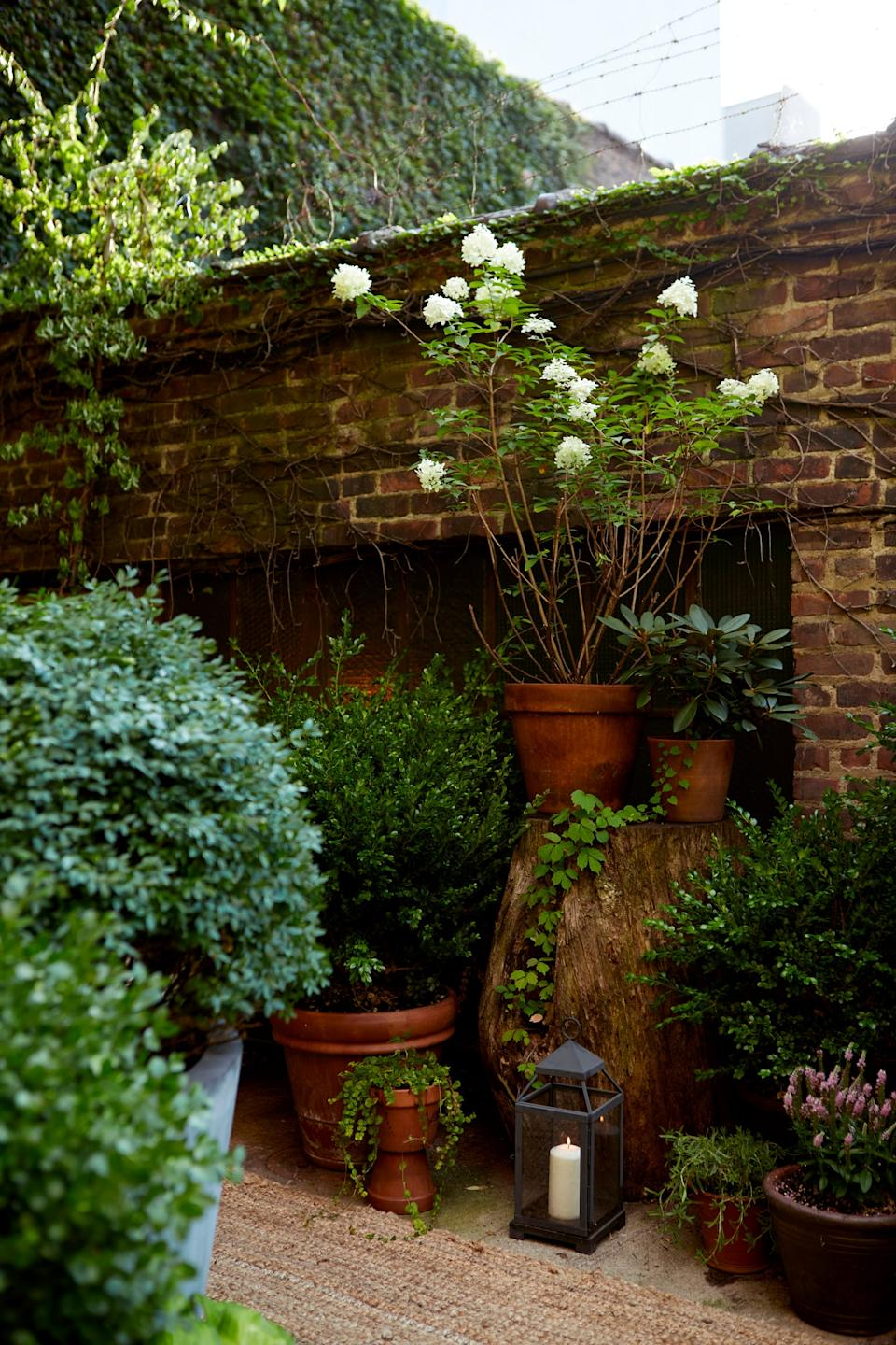 """<div class=""""caption""""> Mel also recommends getting pots in a variety of sizes to add visual interest. Garrett and James claim that Mel is always quick to nab the """"leftovers"""" from projects to use in her own backyard. </div> <cite class=""""credit"""">Photography: Dane Tashima</cite>"""