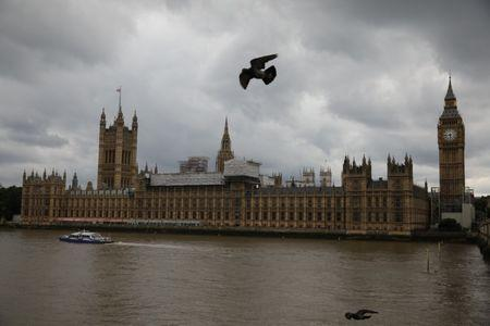 Birds fly past the Houses of Parliament, in central, London, Britain, June 24, 2017.   REUTERS/Marko Djurica