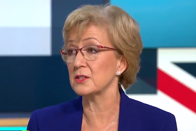 Andrea Leadsom quits: What next for Theresa May as another minister resigns over Brexit?