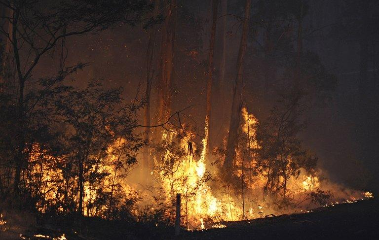 Flames light up the sky in March 2009, during the firestorm that hit the Kilmore East forest region of Australia